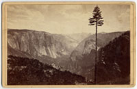 The Yosemite Valley from the Mariposa Trail