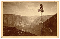 Unnumbered - The Yosemite Valley from the Mariposa Trail