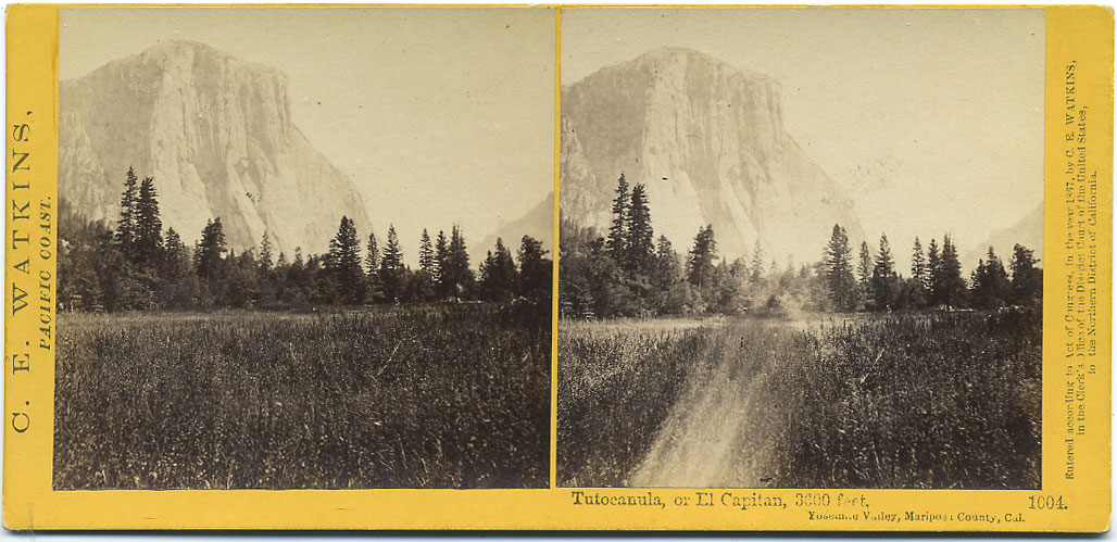 Watkins #1004 - Tutocannula, or El Capitan, 3600 feet