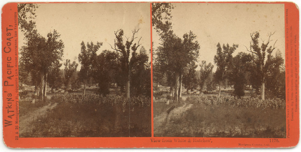 Watkins #1176 - View from White & Hatches', Mariposa County