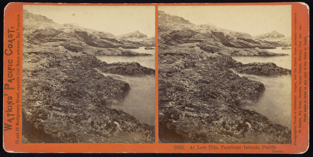Watkins #2032 - At Low Tide, Farallone Islands, Pacific Ocean