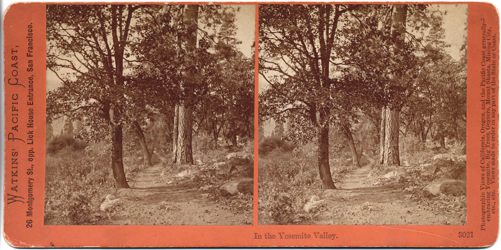 Watkins #3021 - In the Yosemite Valley, Yosemite Valley, Mariposa County, Cal.