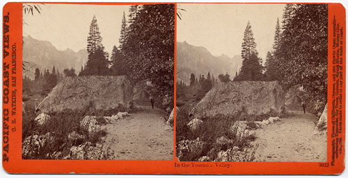 #3022 - In the Yosemite Valley, Yosemite Valley, Mariposa County, Cal.