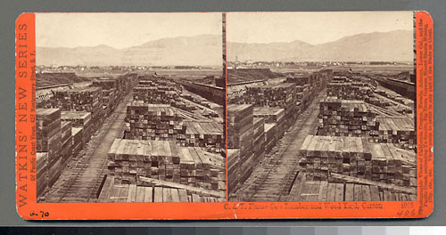 #4066 - C. & T. Flume Co.'s Lumber and Wood Yard, Carson, Nev.