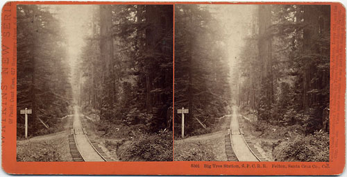 #5001 - Big Tree Station, S.P.C.R.R.  Felton, Santa Cruz Co., Cal.