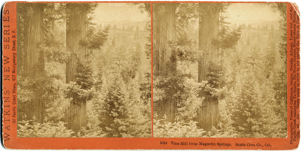 Watkins #5024 - Vine Hill from Magnetic Springs. Santa Cruz Co., Cal.