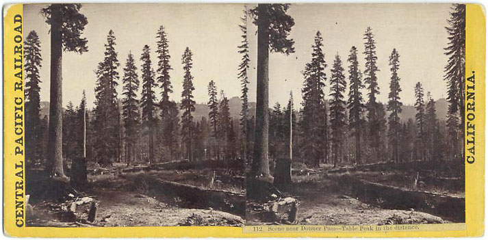 Watkins #112 - Scene near Donner Pass, Table peak in distance