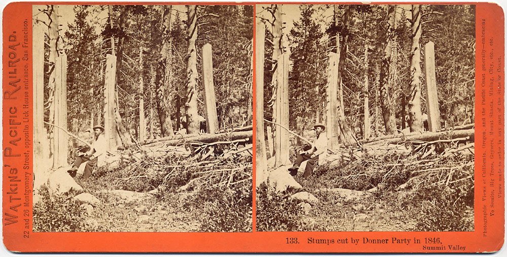 Watkins #133 - Stumps cut by Donner Party in 1846, Summit Valley