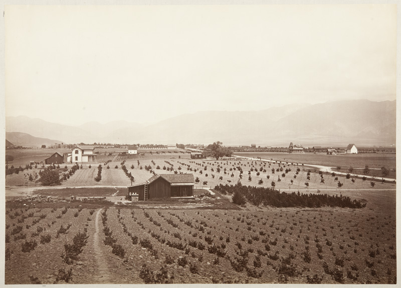 Watkins #1152 - Indiana Colony, Los Angeles County