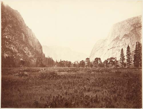 #71 - View down Yosemite Valley, Meadow Scene