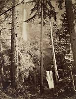 423 - Multnomah Falls, Side View, Oregon