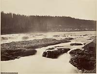 413 - The Willamette Falls, Near View, Oregon City