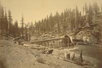 1402 - Blue Tent Sawmill, near North Bloomfield, Nevada County