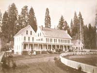 989 - Mammoth Tree Grove Hotel, Calaveras Mammoth Trees