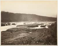 409 - The Willamette Falls, Oregon