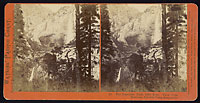 12 - The Yosemite Falls, 2630 Feet.  View from Hutchings, Yosemite Valley, Mariposa Co.