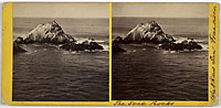 778 - The Seal Rocks