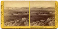 1556 - View in Shasta Valley, Siskiyou Co., Cal.