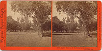 1918 - Lawn View at T. H. Selby's Residence, Fair Oaks, Cal.