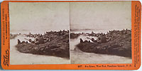 2057 - Sea Lions, West End, Farallone Islands, Pacific Ocean