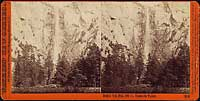 3100 - Pohono, the Bridal Veil, 900 ft., Yosemite Valley, Mariposa County, Cal.