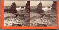 5055 - Monument Point, near Natural Bridge, Santa Cruz, Cal.