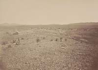 1313 - View of Town of Tombstone, Cochise County, Arizona Territory